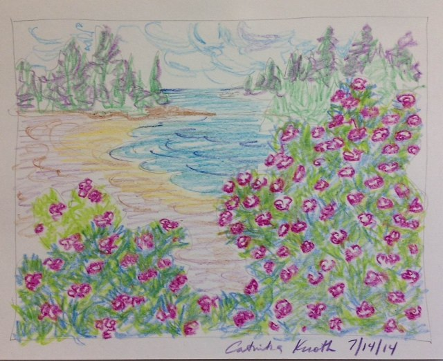 beach roses scene  crayon drawing by Catinka Knoth
