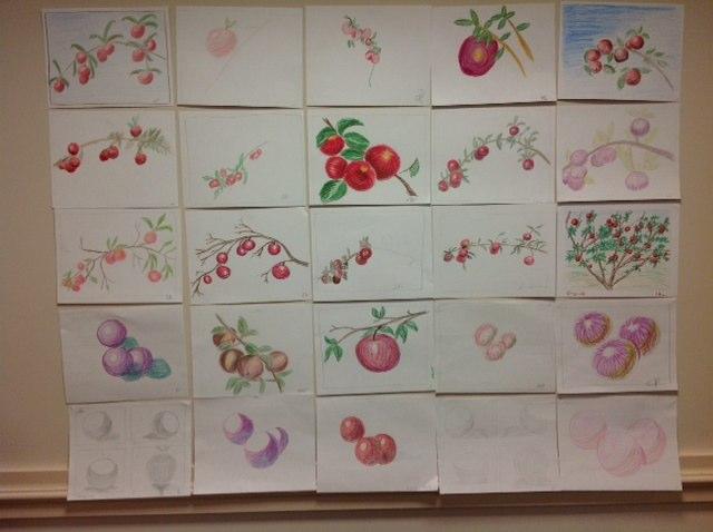 apples N spheres lesson 4