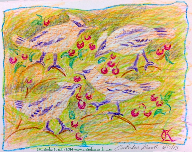 cedar waxwings crayon drawing, 2013 Catinka Knoth