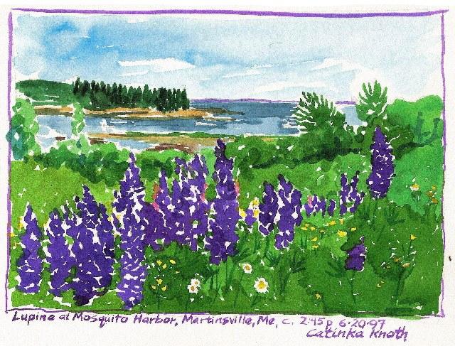 coastal maine florals scenes - lupine