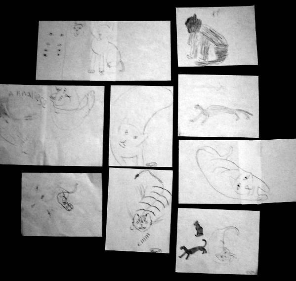 kids' cat drawings
