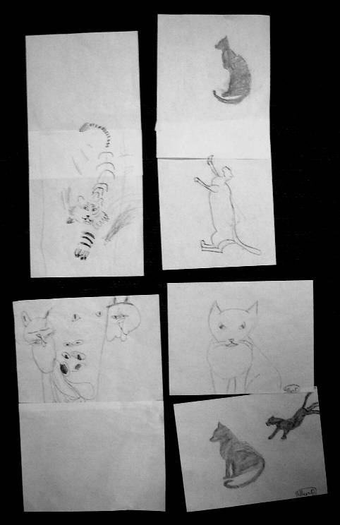 kids' cat drawings