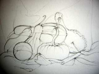gourds drawing