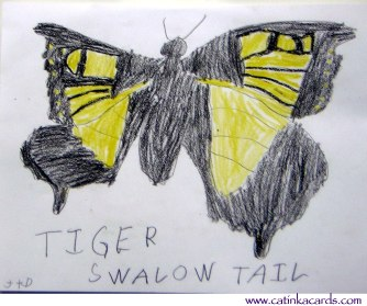 swallowtail butterfly kids drawing