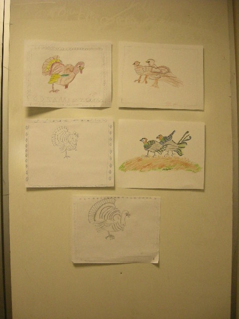 Turkeys & pheasants adult student drawings